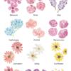 monogram-flowers-all-sample-monogram-floral-watercolour-custom-painting-inkanotes-irish-ireland-calligraphy-botanical-watercolour