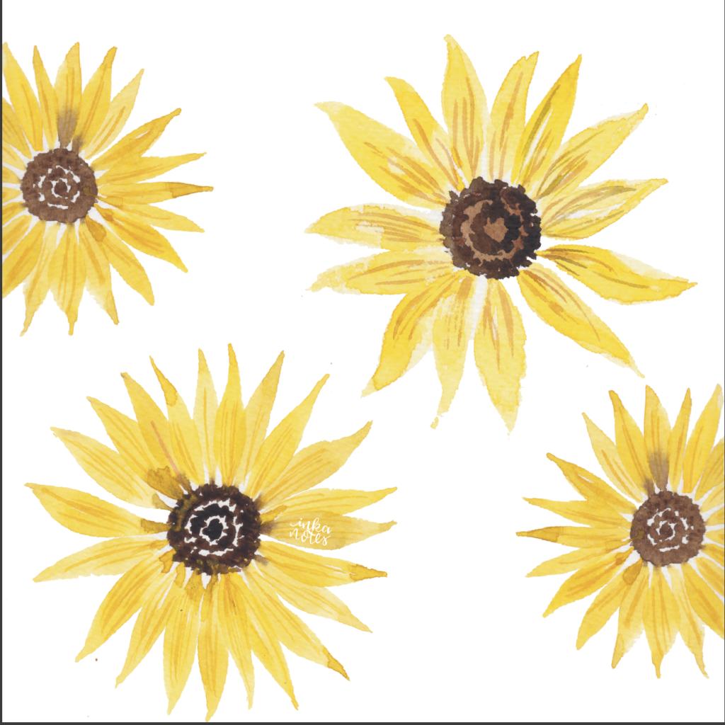 sunflower-sample-monogram-floral-watercolour-custom-painting-inkanotes-irish-ireland-calligraphy-botanical-watercolour