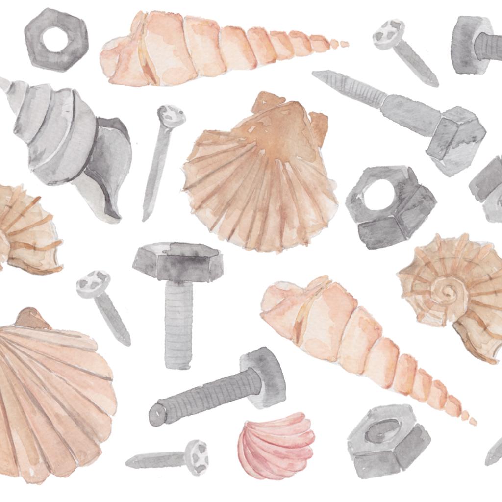 Muschel Nagel Schrauben Shells Nails inkanotes Kalligraphie Aquarell Calligraphy Watercolor Licensing Designer Designs